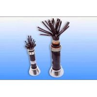Copper conductor PVC 160℃ / XLPE insulated PVC sheathed Plastic Insulated Control Cable