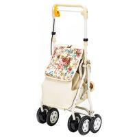 Product-assisted Travel for the Elderly Multifunctional Walking Assistant Vehicle for the Elderly