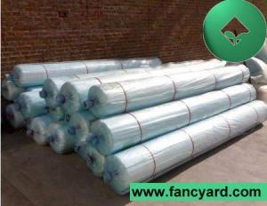 China Polyethylene Greenhouse Film, Greenhouse Poly Film on sale
