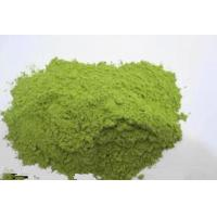 Organic Oat Grass Powder Oat Grass Juice Powder High Quality Health Care Product Exporter