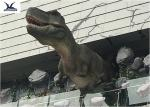 Life Size Mechanical Outdoor Dinosaur Statues For Dinosaur Theme Park / Zoo