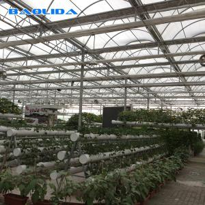 China Agriculture Polytunnel Greenhouse Wind Resistant Hot Galvanized Structure on sale