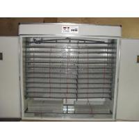 Incubators Hld-5280