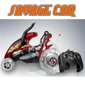China RC SAVAGE CAR,RC Car,RC toy,RC model car on sale