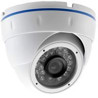 24pcs LEDs Fixed Lens Network IP Vandalproof Dome camera,pixel option aluminum white housing support Onvif HD IP camera
