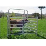 Light Weight Cattle Corral Panels Animal Fence Panels Round / Square / Oval Tube Type