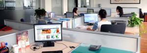 China Produits de matériel informatique de Techsafe fabriquant Cie., Ltd manufacturer