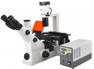 China Ultraviolet Fluorescent Microscopes Kohler Illumination For Clinical on sale