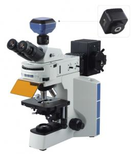 China Phase Contrast Inverted Fluorescence Microscope Built In Transmitted Koehler Illumination on sale