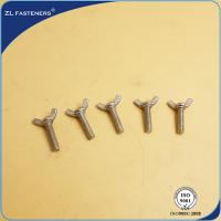 A2-70 stainless steel SS304 DIN316 Butterfly Wing Bolts /butterfly bolt and nut