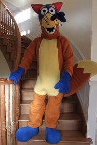Quality Custom Kids Cartoon Character Swiper Amusement Costumes for sale