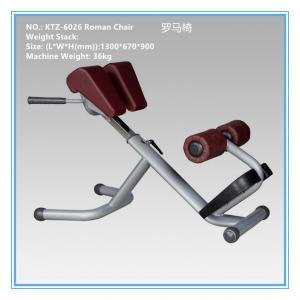 China Low Impact Aerobic Exercise Equipment Roman Chair Hyperextension Bench 54 Kg on sale