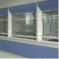 China Cupboard Steel Fume Hood Lab Equipment , Chemical Fume Hood For School on sale