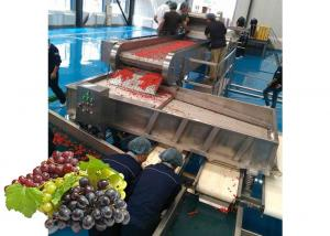 China Concentrated  Grape Juice Processing Line / Fruit Juice Processing Equipment on sale