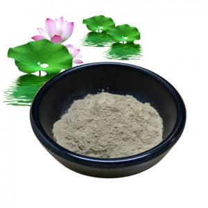 China Natural Weight Loss Additives Nuciferine Lotus Leaf Extract Powder 10% 50% 98% on sale
