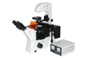China XDY-2 Fluorescence microscope China Manufacturer on sale