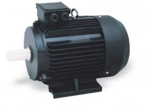 China Synchronous Industrial  3 Phase Induction Motor Medium Three Phase Voltage 380V on sale