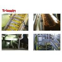 Industrial Fresh Apple Processing Line , Fruit Processing Machine Aseptic Bag Package