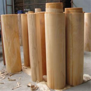 Precise Cutting Beech Veneer Sheets , Natural Beech Veneer Customized Size
