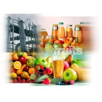China Fruit processing Plant, fruit plant, fruit juice processing machine, apple/pear/peach/grapes/banana/ on sale