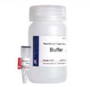 China Trypsin Solution 1 / 2500 Animal Components Free Trypsin for Cell Dissociation on sale