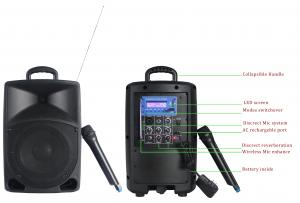 China Professional Audio Portable PA Plastic Cabinet Speaker With Wireless Mic on sale