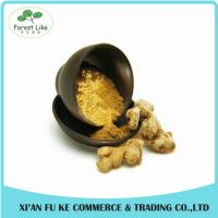 100% Natural Yellow Ginger Extract Powder 10 :1