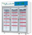 直立したガラス アイス クリームの凍らせていた肉のためのドアのフリーザーによって凍らせている表示