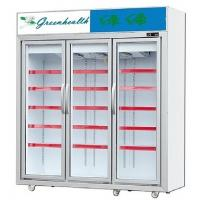 China Upright Glass Door Freezer Frozen Display For Ice Cream Frozen Meat on sale