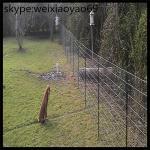 la taille de barrière de cerfs communs de barrière de cerfs communs/cerfs communs de barrière de cerfs communs de bâti de crâne de cerfs communs de fabrication barrière de cerfs communs les poly clôturent/barrières électriques de cerfs communs