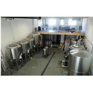 SS 304 Carbonated Beverage Beer Brewing Equipment Microbrewery Equipment 500L
