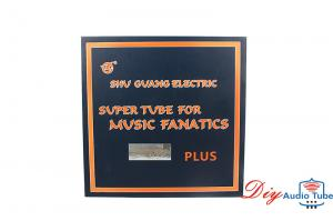 Shuguang WE300B PLUS single-ended triode audio AMP Replica Western