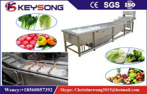 China Rooted Plant Fruit And Vegetable Processing Machinery Washing Equipment  Large Capacity on sale