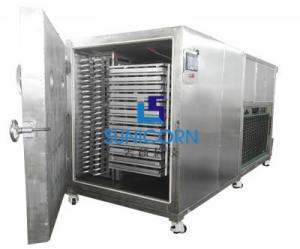 China 10sqm 100kg Vacuum Fruit Drying Machine Air Cooled Heating Without Water Cooling on sale
