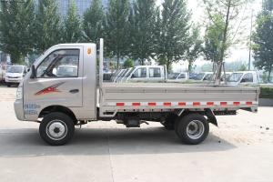 China T-King Brand Gasoline & DIESEL 4x2 mini truck small