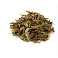 Rhizome of Shiny Bugleweed Lycopus lucidus Turcz ex Benth stem Ze Lan Di sun