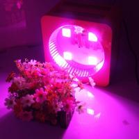 Patent Product High Power LED Plant Grow Light 300w 8 Bands Full Spectrum