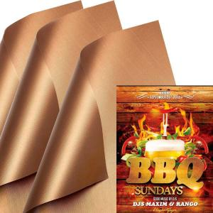 China Dishwasher Safe Heavy Duty Oven BBQ Grill Mat Non Stick on sale