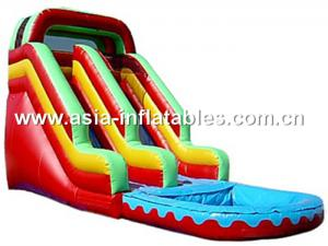 China Giant Inflatable Water Slide, Inflatable Slide On Sale on sale