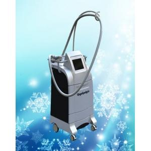 China ADSS-Cryo fat loss equipment on sale
