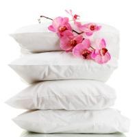 100% mulbbery silk pillows