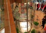 1000 - 1350kg Glass Panoramic Lift Circular Elevators With CE ISO Approved