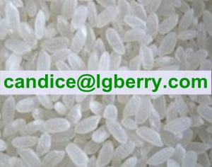 China Natural Rice Protein powder on sale