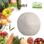 Chelated B OMRI Amino Acid Fertilizer