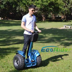 China SGS Two Wheel Electric Vehicle Self Balanced Ecorider Hover Board Skate Board on sale