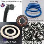 Encapsulated O-Ring,PFA Encapsulated Silicone O RingFEP Encapsulated Viton O-Ring