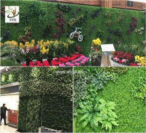 Quality UVG Artificial Green Living Wall With Plastic Grass For Vertical  Garden For Sale