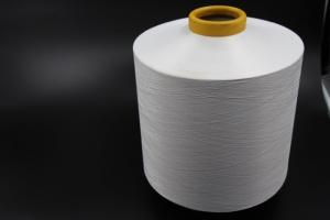 China Chip Spinning Polyester Full Dull Yarn For Embroidery And Knitting RW 75D/72F on sale