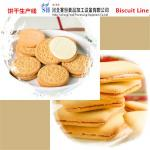 SAIHENG automatic small biscuit making machine price hard and soft biscuit