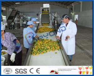 China Complete Turn key Project Mango Fruit Juice Processing Line High Engery Saving on sale